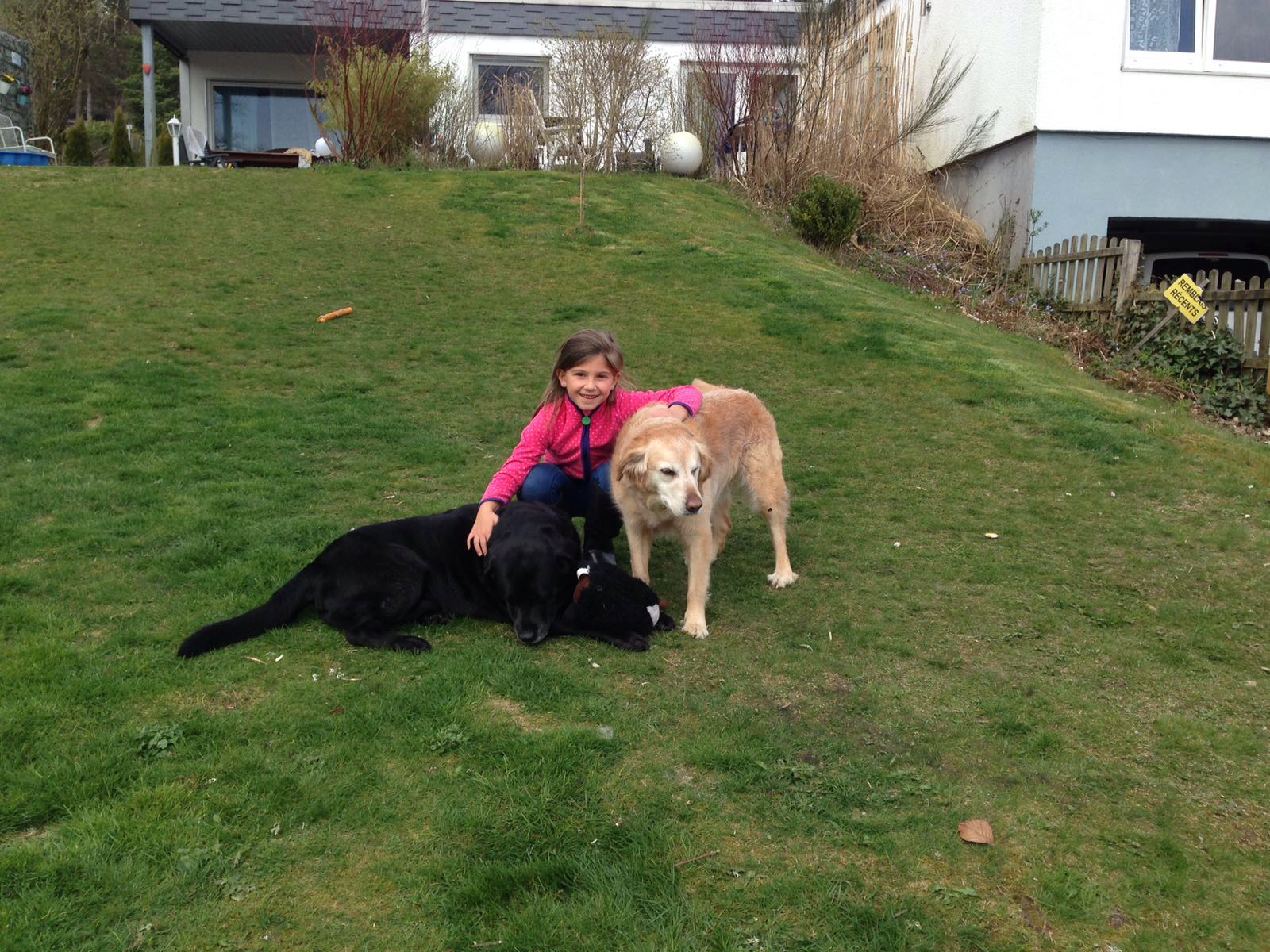 10.04.16 Albus und Merry haben Besuch von der Nachbarin