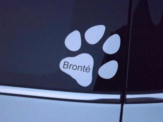 Bronté verfügt auch über ein Gefährt ;-)