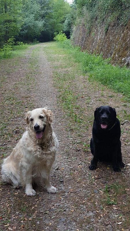 ... mit seiner Cousine Virgule in der Ardèche.