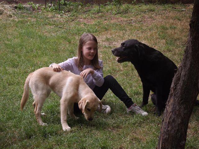 Talea, Emelie und Albus