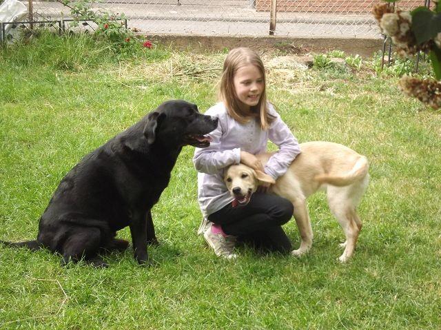 Albus, Emelie und Talea