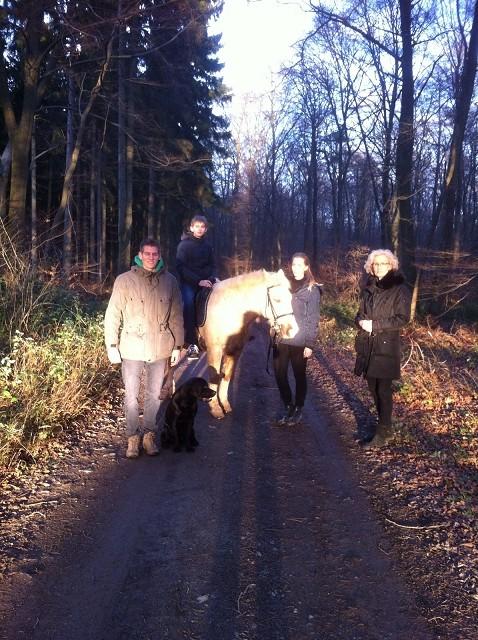 """24.12.2015 - Auch Balou """"Drumnadrochit's Eradan"""" hat Bilder von sich ...."""