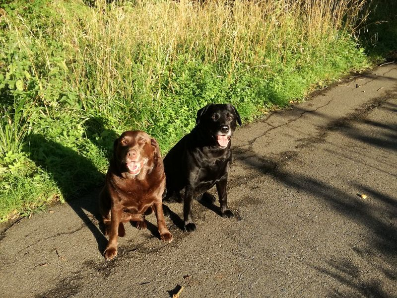 Bo und eine Freundin :-)