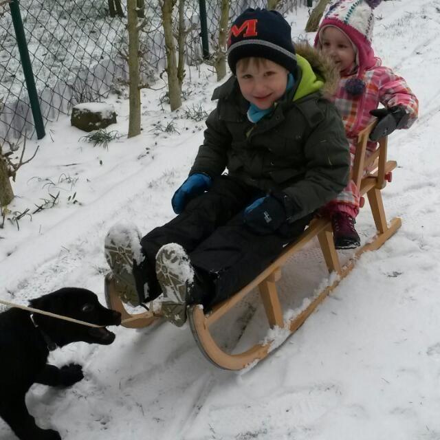 30.12.2014 - Auch Lucy hat Spass im Schnee