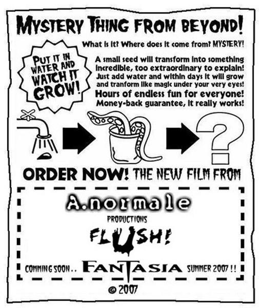 Flyer Fantasia