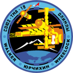 Sojus TMA-19 Missions-patch