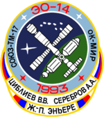 Mission patch Sojus TM-17