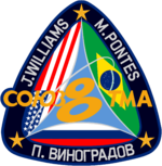 Sojus TMA-8 Mission patch