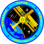 Mission patch Sojus TMA-10