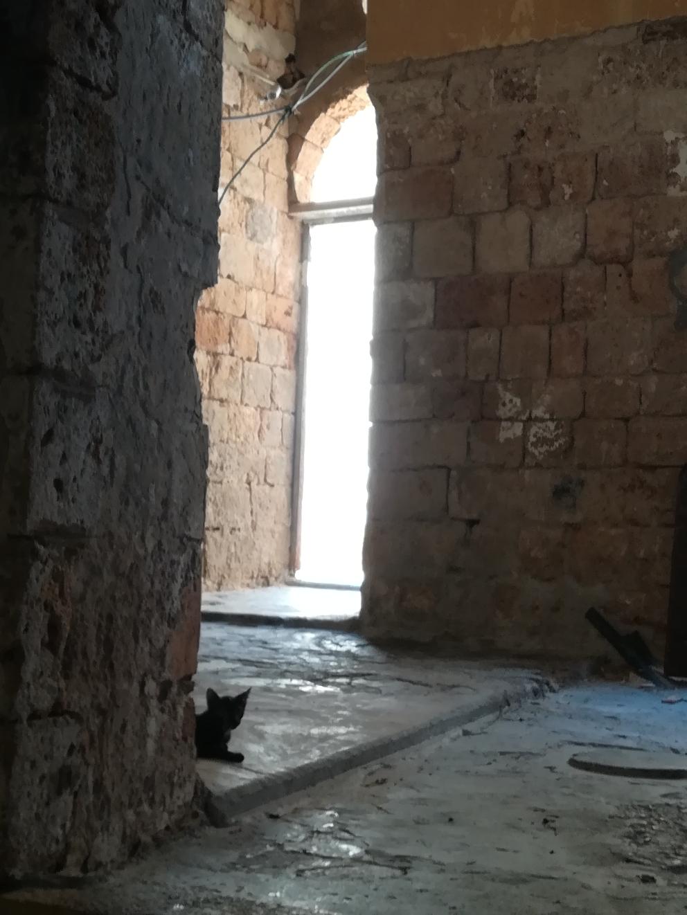 In der verschlungenen Altstadt von Akko