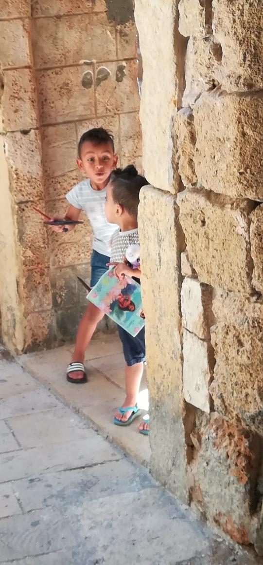 Kleine Bewohner der Altstadt von Akko.