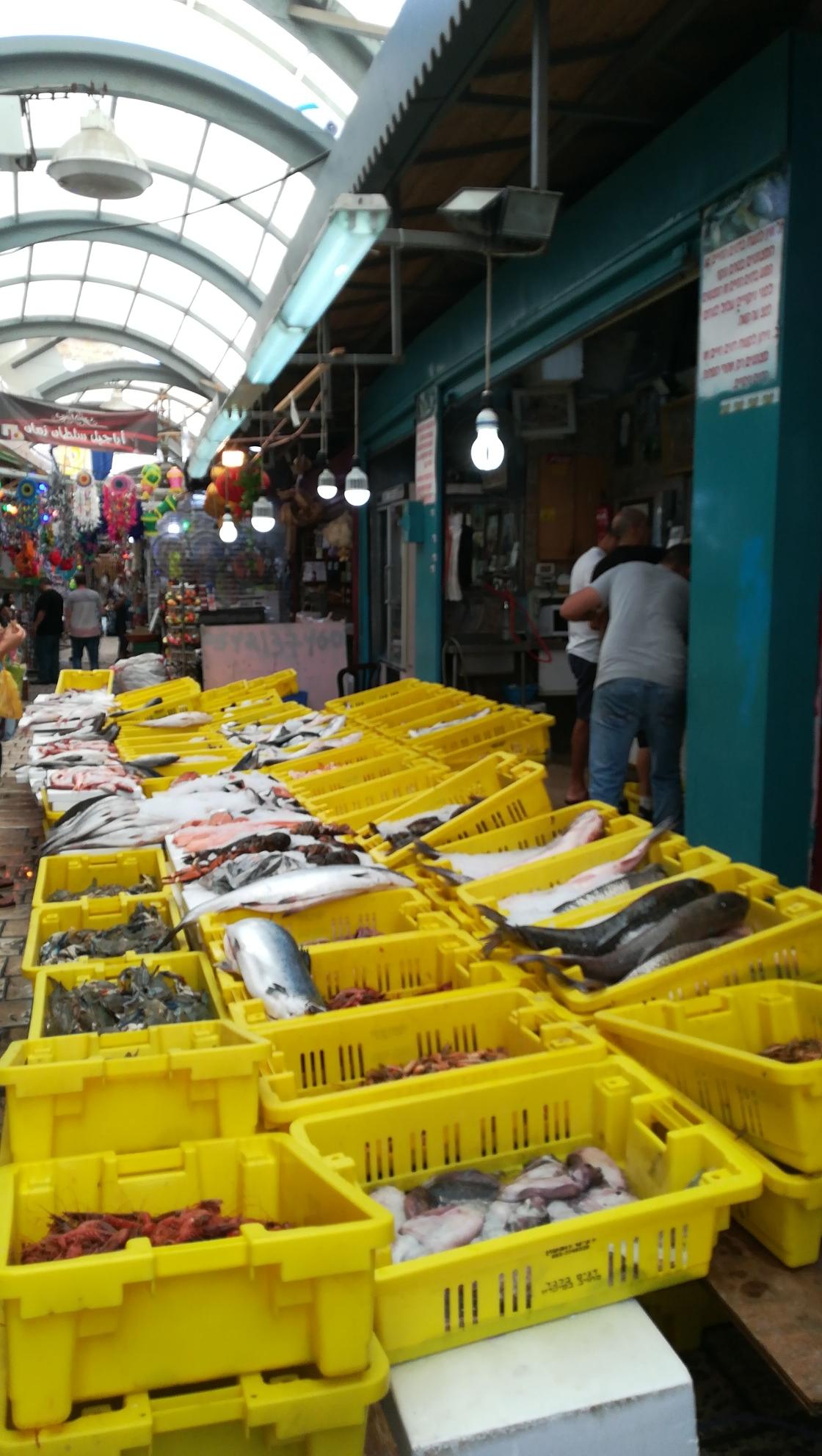 Mittags sind diese wunderbaren Fische noch nicht verkauft. Fliegen beginnen, sich auf ihnen niederzulassen. Ich schaue in ihre blinden Augen- sie sind eine stumme Anklage.