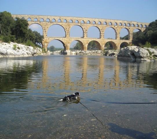 Paddling below Le Pont du Gard