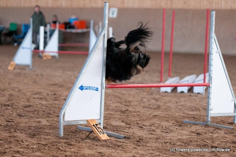 Paula beim schweben über die Hürden