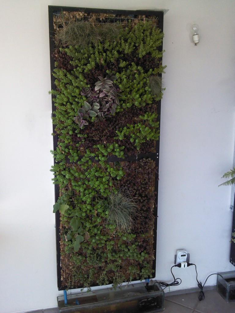C Mo Comprar On Line En Muros Verdes Jardines