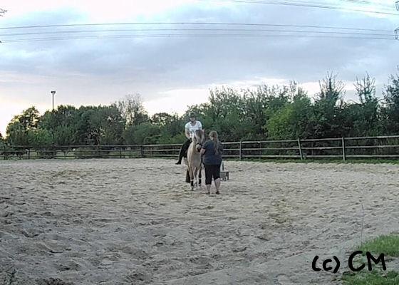 Erstes mal Reiter