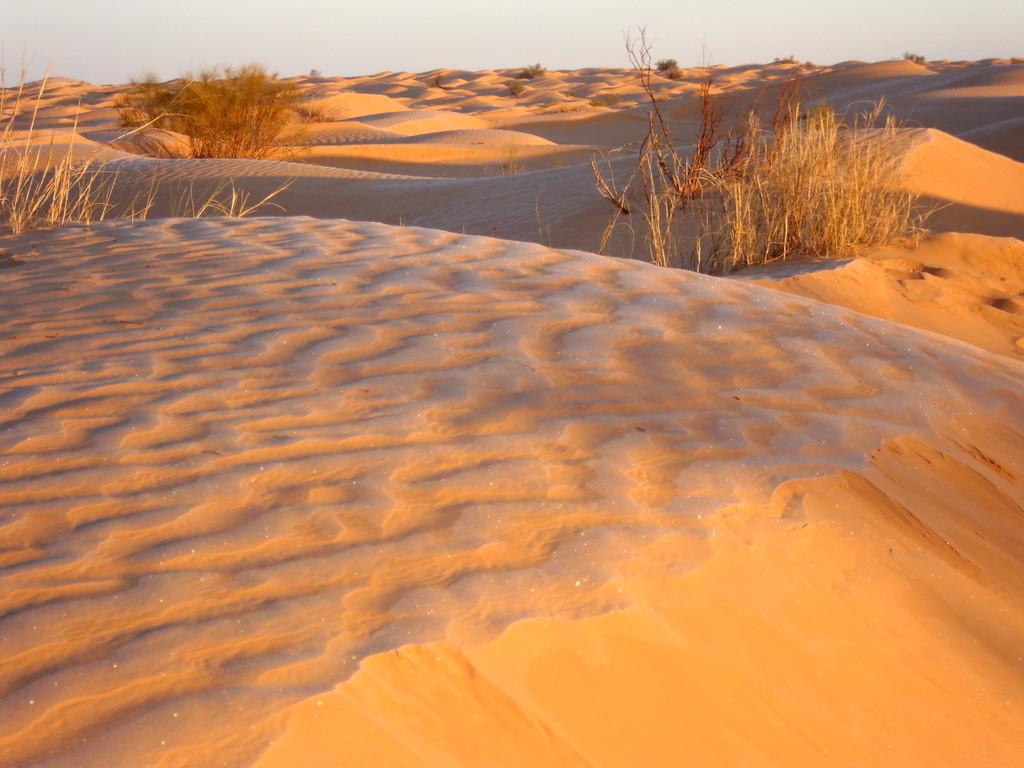 Frost in der Sahara