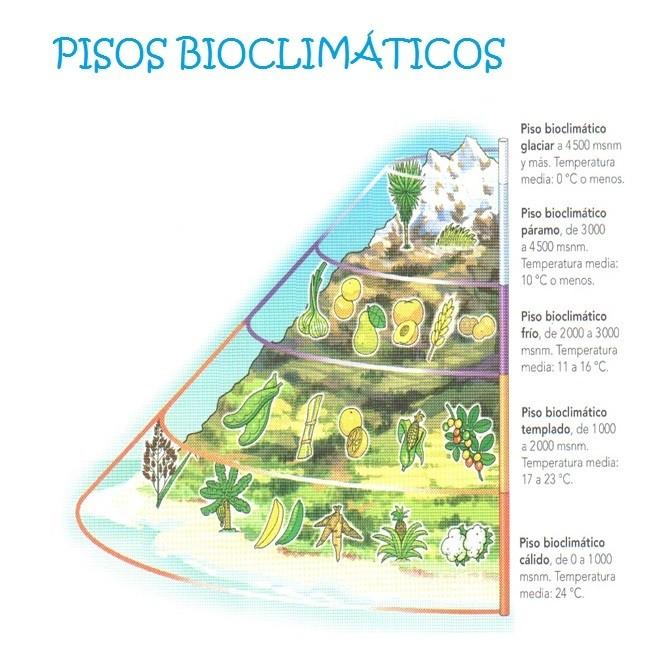 Pisos Termicos De Colombia Para Dibujar Clei Ii Primera