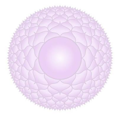 Das Kronen-Chakra: Der Juni im SOULGARDEN Feng Shui Blog
