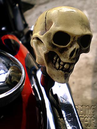 Skull No.1 Shift knob /ドクロ1号・シフトノブ