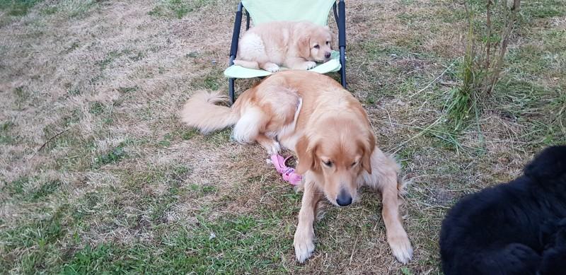 während Aryx sich dem Trampolin zuwendet, entscheidet sich Ayko für den Campingstuhl