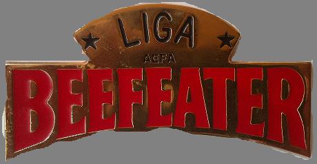 I LIGA AEFA 1995