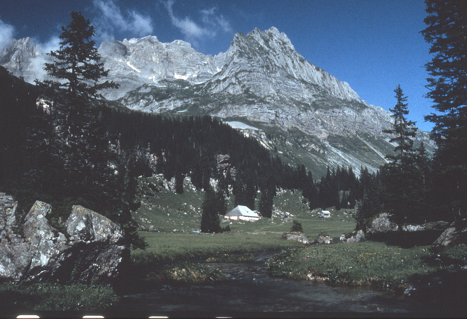 Mürtschenstock von Osten, Alp Unter Mürtschen