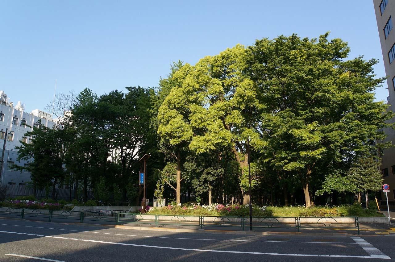 戸山公園の出口(明治通り側)