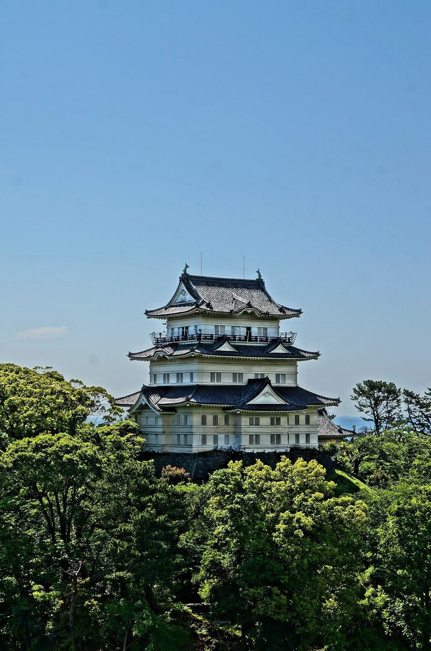 わ、キレイ♪お客様にいただいた小田原城の写真だよ