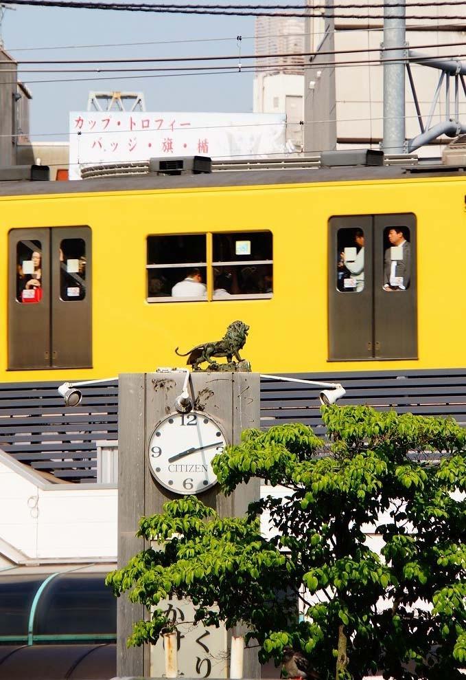 黄色い電車が通るとクッキリ見えるんだね♪