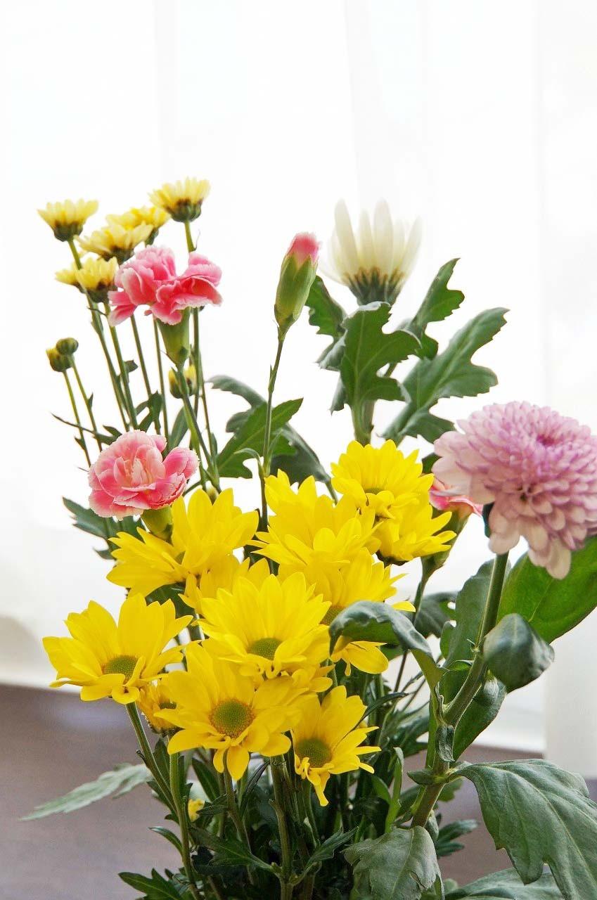 そして今日は亡き恩人の誕生日。供花にもカーネーションが入っていたよ