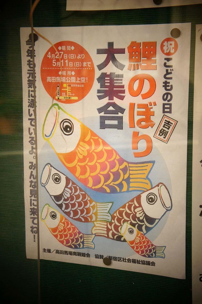 掲示版にさしてあって、よく観ると「鯉のぼり大集合」の告知が!!!
