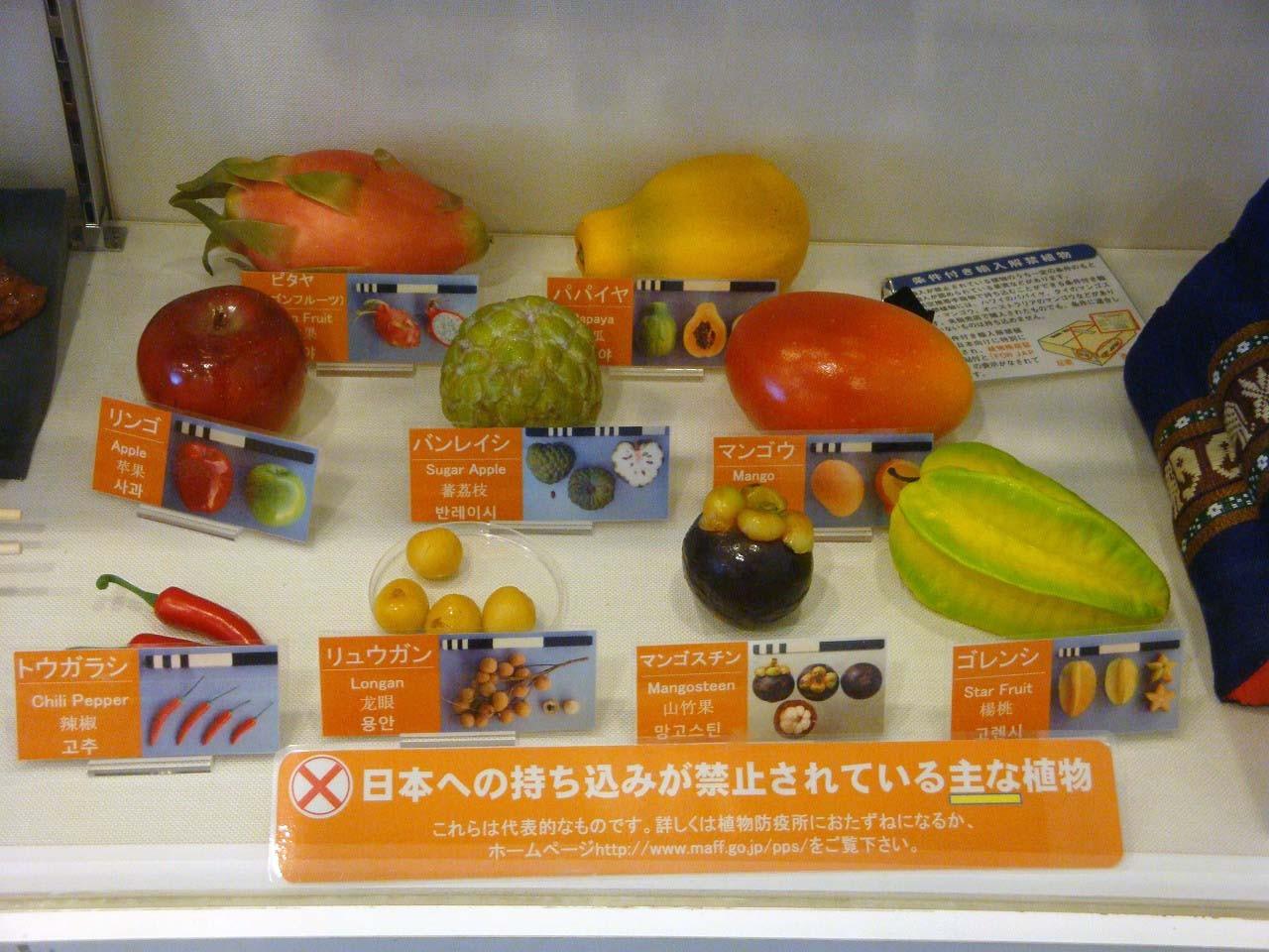 へ~海外から持ち込めない果物ってこんなにあるんだね
