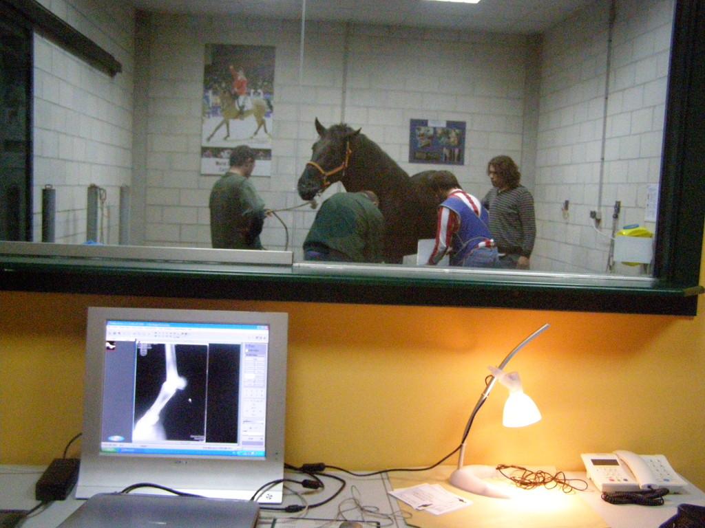 Sala de diagnostico por imagen : US , Radiologia Digital , Videoendoscopia
