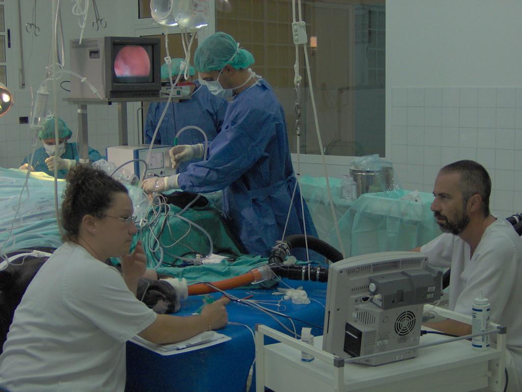 Monitorizacion anetesica