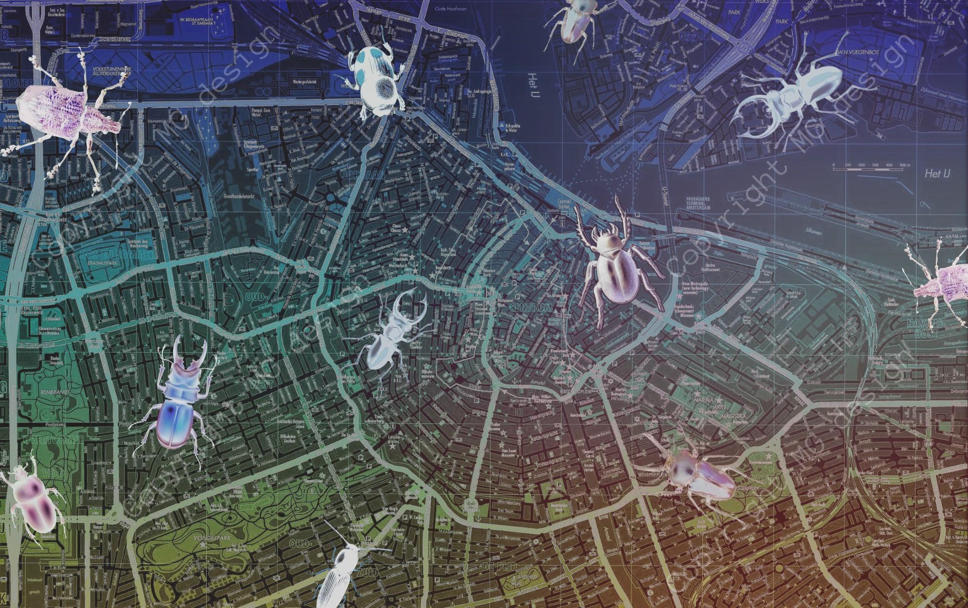 Citymap 1