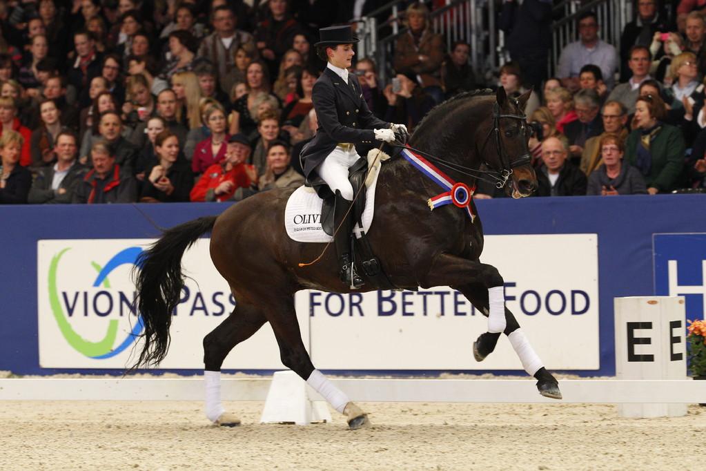 """OLIVI labellisé """"KEUR"""" par le KWPN ! Guest Star du KWPN Stallion Show à S'Hertogenbosch(NED)"""