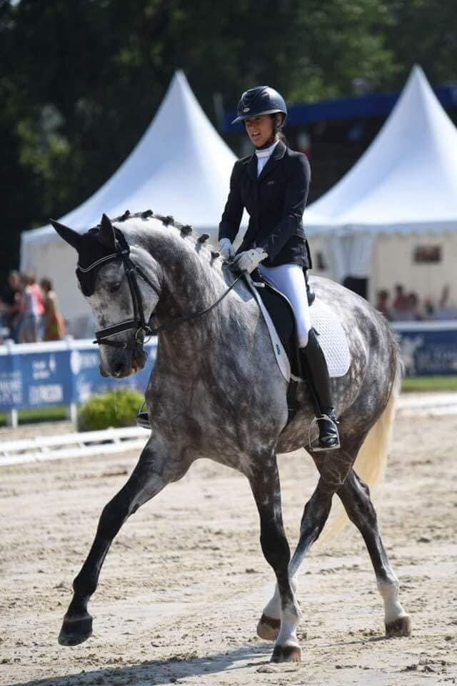 Flair Royal, gagnant des 6 ans Saumur