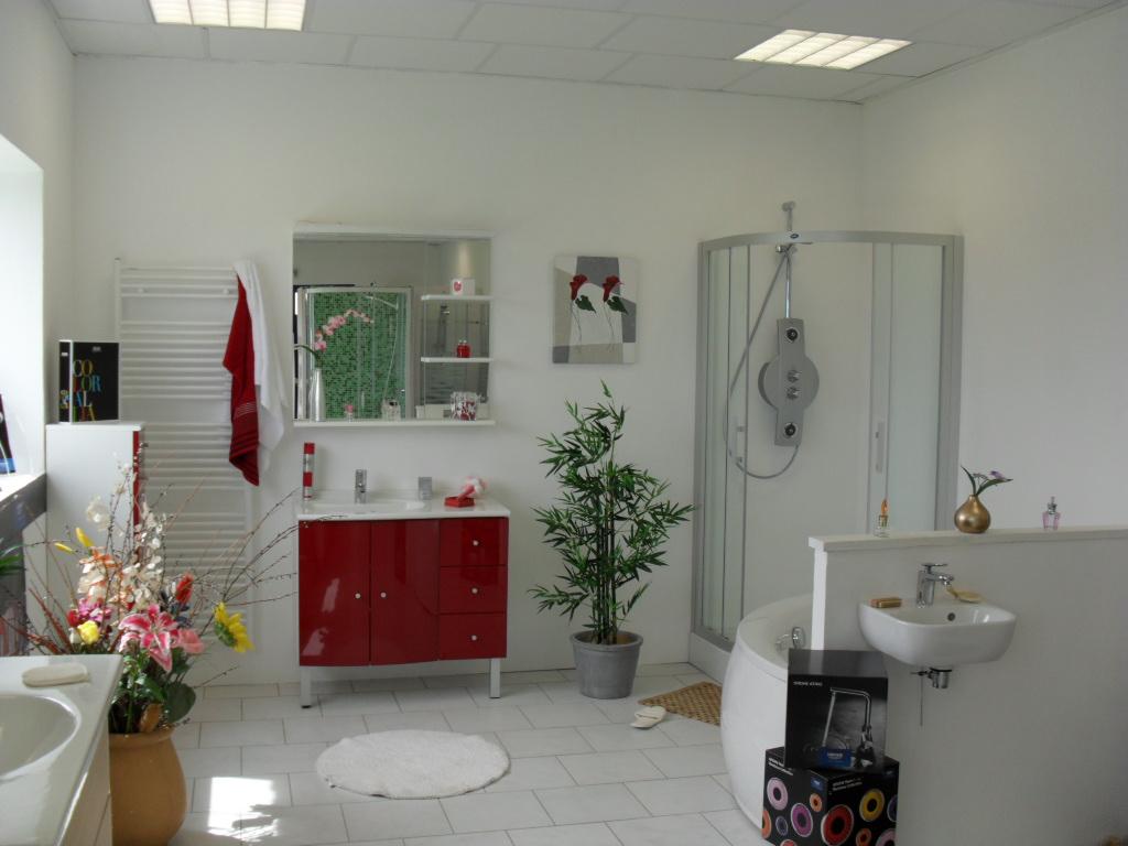 Showroom ZA Les Vigneaux- 36210 Chabris