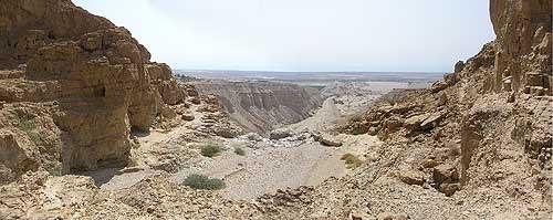 Qumran Bibel Fund