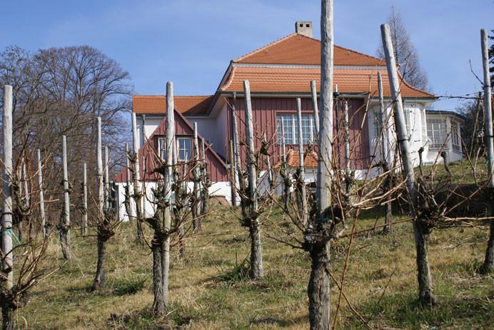 Max-Klinger Haus im Blütengrund bei Naumburg