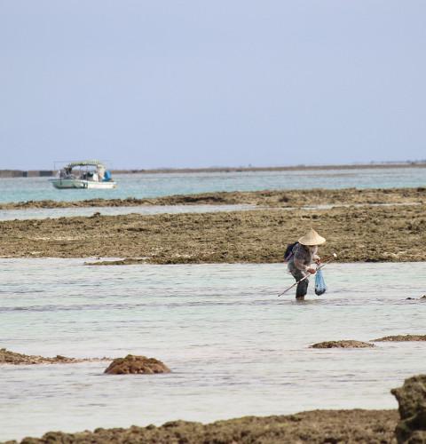 旧暦の3月3日には「浜下り」が行われる。女性の健康を願う伝統行事であり、海水に手足をつけることで身が清められるとされる。この日は大潮のため魚や貝をとり、ご馳走を食べる。