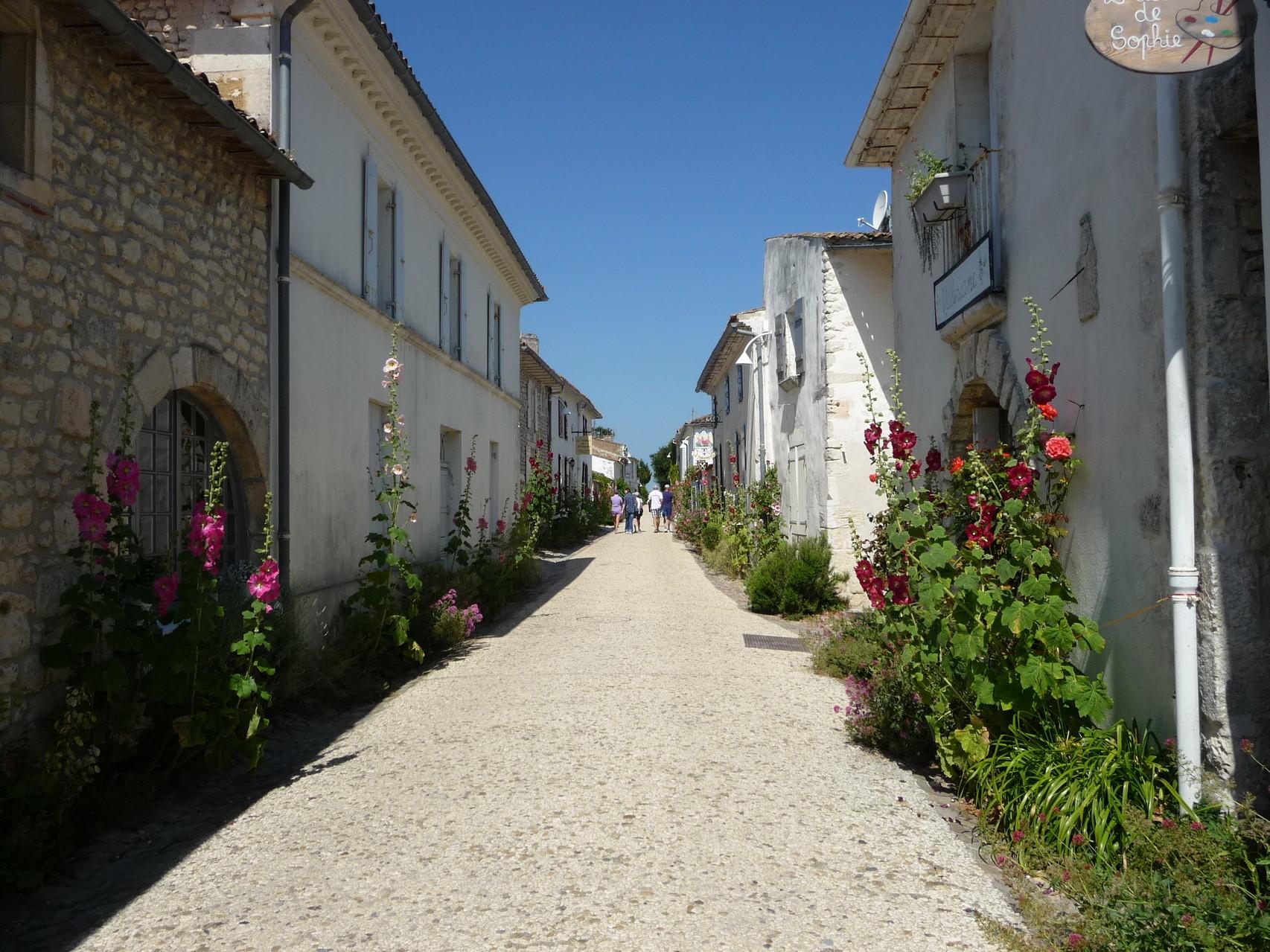les rues de Talmont sont bordées de roses trémières