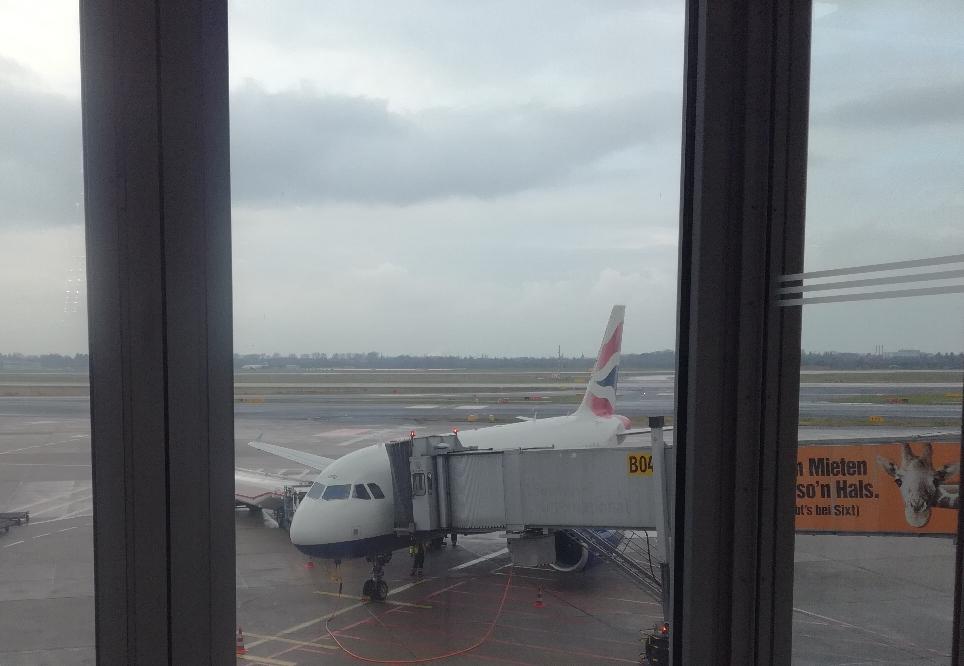 Der Vogel fliegt uns nach London