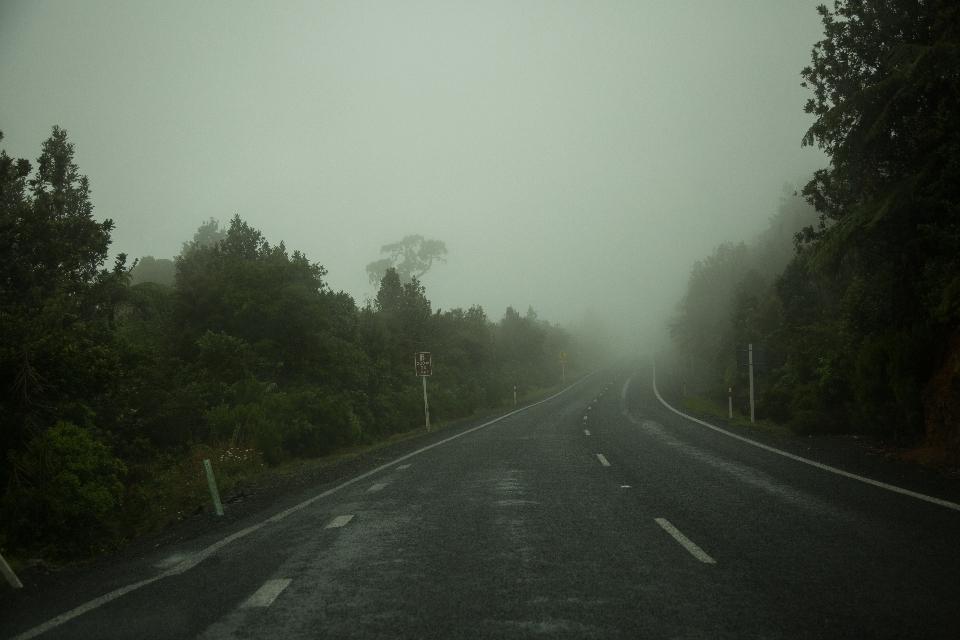 Nach lauter Bäume- und Wasserfallbestaunen haben wir uns auf Straßen, die auf einmal in Nebel  versinken, auf die Weiterfahrt begeben.