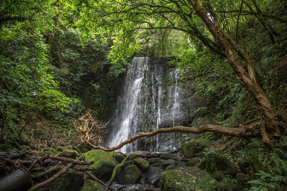 Zwischendurch einen Wasserfall im Dschungel besucht ...
