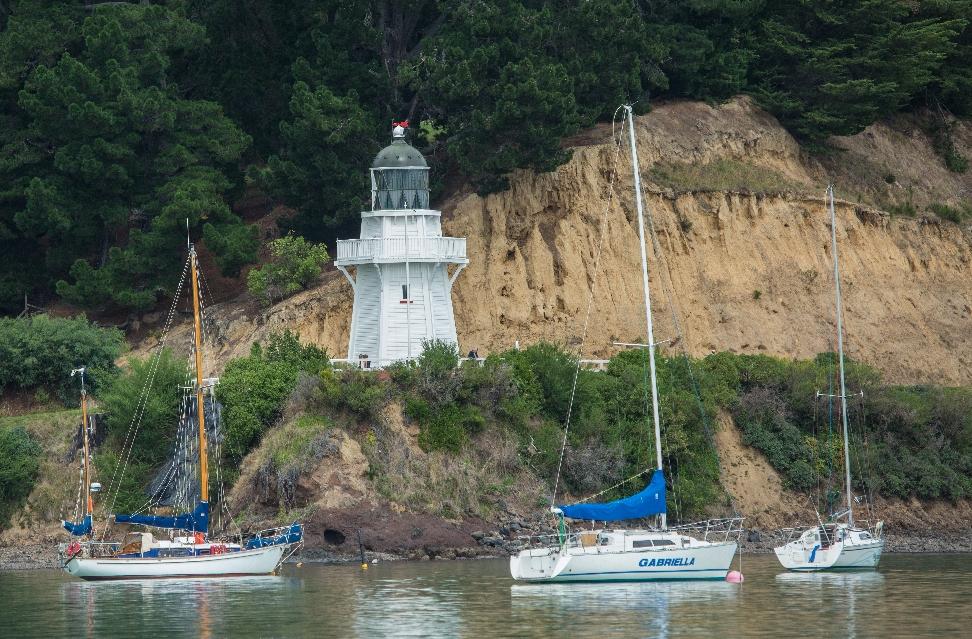 So ist die Natur. Und es ging delfinlos zu Akaroas Hafen zurück, der mit seinem kleinen Leuchtturm recht einladend wirkt.