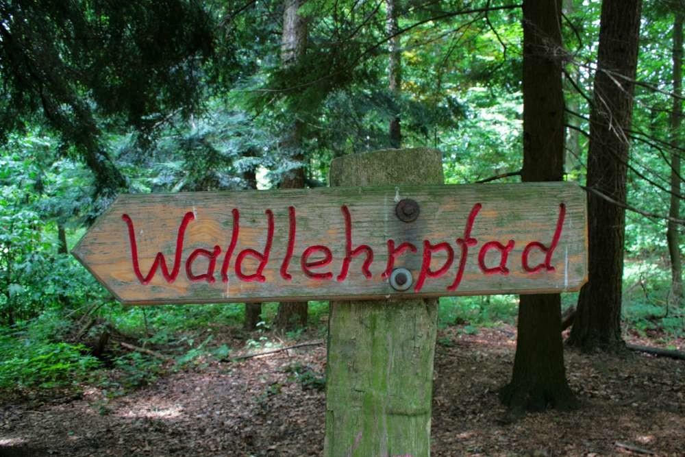 Wildpark Wiehl (Waldlehrpfad)