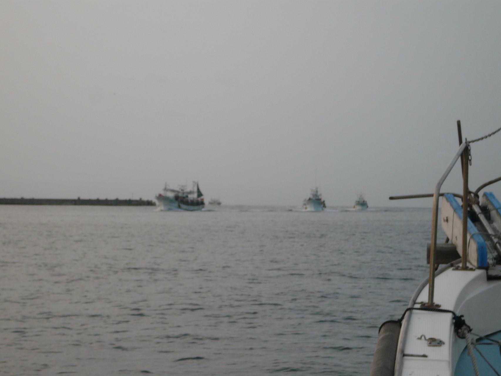 6月23日 イカ釣り船の帰港