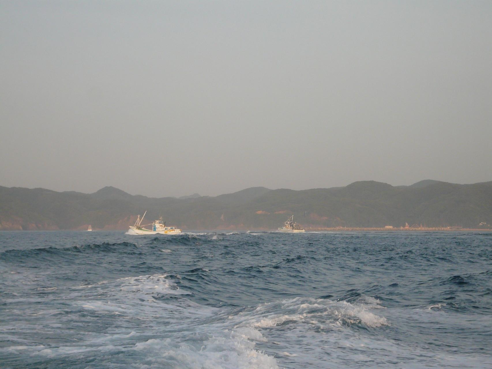 6月1日巻き網船団が帰港中 今日も釣果悪しか?